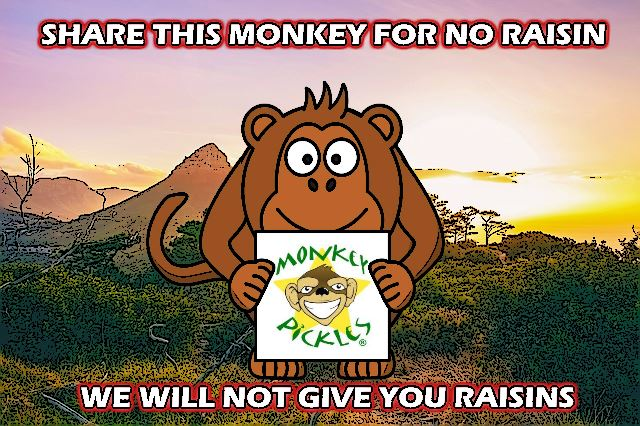 MEME - Share Monkey